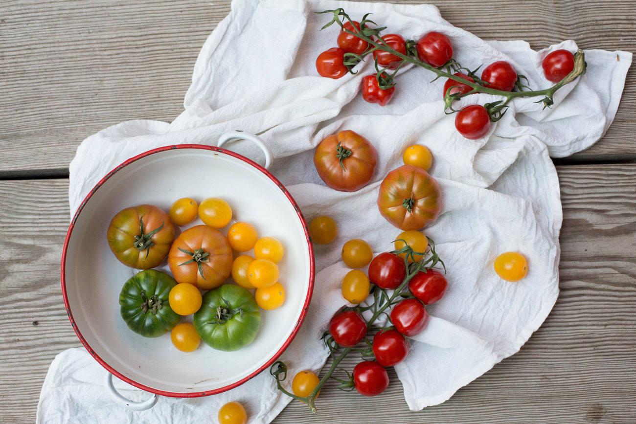 bunte-tomaten-2